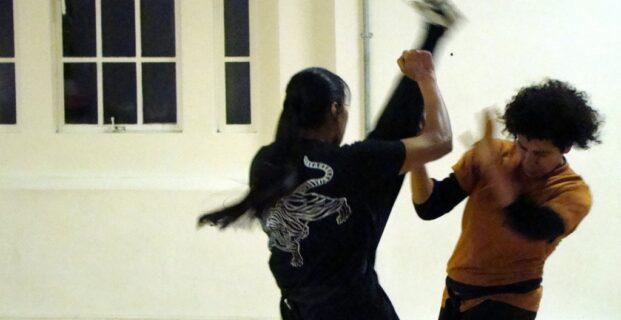 Axe Kick - Sung Chuan Kung Fu